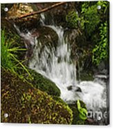 Rushing Mountain Stream And Moss Acrylic Print