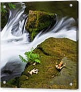 Rushing Water At Whatcom Falls Park Acrylic Print