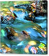 Rushing Water Over Fall Leaves Acrylic Print