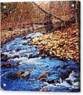 Russell River Acrylic Print