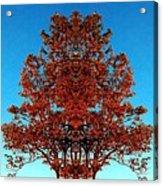 Rust And Sky 2 - Abstract Art Photo Acrylic Print