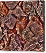 Rusted Bolt In The Rocks Acrylic Print