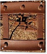 Rusted Deception Acrylic Print