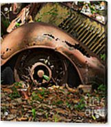 Rusted Acrylic Print by Louise Heusinkveld