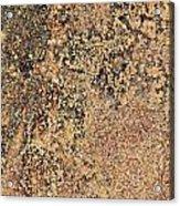 Rusted Metal Acrylic Print