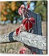 Rustic Autumn Acrylic Print