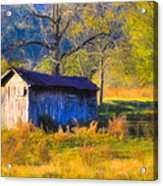 Rustic Autumn Landscape In North Georgia Acrylic Print by Mark E Tisdale