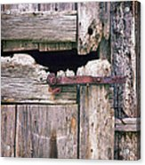 Rustic Barn Door Acrylic Print