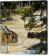 Rustic Cabin In The Pines Acrylic Print