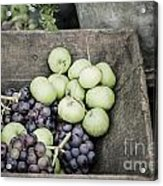 Rustic Fruit Acrylic Print