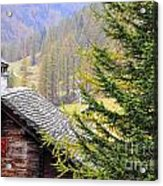 Rustic House And Tree Acrylic Print