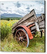 Rustic Landscapes - Wagon And Wildflowers Acrylic Print