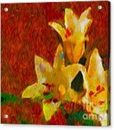 Rustic Lilies Acrylic Print