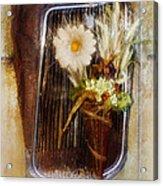 Rustic Romance Acrylic Print by La Rae  Roberts