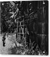 Rustic Shed 5 Acrylic Print