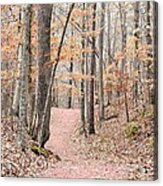 Rustic Trails In January 2013 Acrylic Print