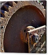 Rusty Picking Acrylic Print by Gwyn Newcombe