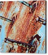 Rusty Spikes Acrylic Print