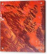 Rusty Textures Acrylic Print