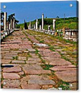 Sacred Road To Asclepion In Pergamum-turkey  Acrylic Print