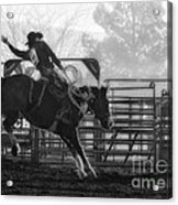 Saddle Bronc Riding Acrylic Print
