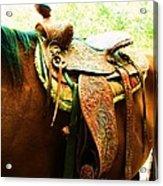 Saddle Acrylic Print