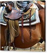 Saddle Up Partner Acrylic Print