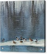 Safehaven   Indiana   Winter Acrylic Print