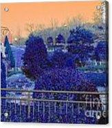 Sagamihara Asamizo Park 16g Acrylic Print
