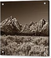 Sagebrush And Tetons Acrylic Print