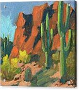 Saguaro Cactus 1 Acrylic Print