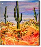 Saguaro Cactus Desert Landscape Acrylic Print