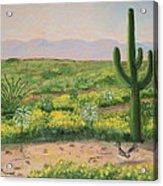 Saguaro Monument Acrylic Print