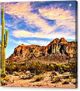 Saguaro Superstition Mountains Arizona Acrylic Print
