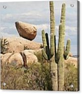 Saguaros And Big Rocks Acrylic Print