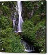 Sahale Falls In Oregon Acrylic Print