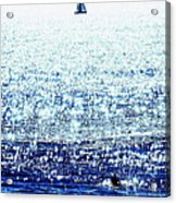 Sailboat And Swimmer Acrylic Print by Brian D Meredith