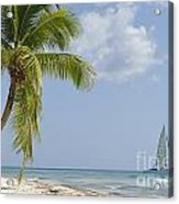 Sailboat Passing By Tropical Beach Acrylic Print by Sami Sarkis
