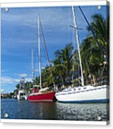 Sailboats  Acrylic Print by Dianne  Lacourciere
