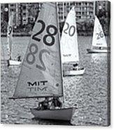 Sailboats On The Charles River II Acrylic Print