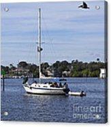 Sailing At Ballard Park On The Eau Gallie River In Melbourne Flo Acrylic Print