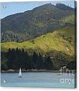 Sailing Cook Strait Acrylic Print