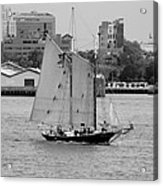 Sailing Free In Black And White Acrylic Print