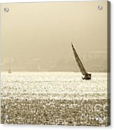 Sailing In San Diego Harbor Acrylic Print by Artist and Photographer Laura Wrede
