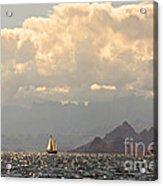 Sailing The Sea Of Cortez Acrylic Print
