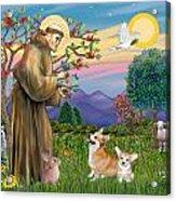 Saint Francis Blesses A Corgi And Her Pup Acrylic Print
