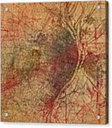 Saint Louis Missouri Street Map Schematic Watercolor On Old Parchment From 1903 Acrylic Print