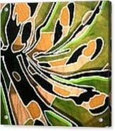 Saint Papilio Polyxenes Study Acrylic Print