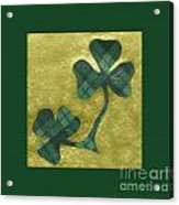 Saint Patricks Day Collage Number 22 Acrylic Print