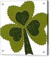 Saint Patricks Day Collage Number 8 Acrylic Print